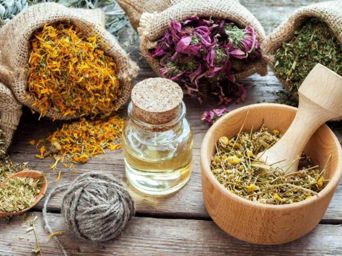 Gyógynövények hajhullás ellen